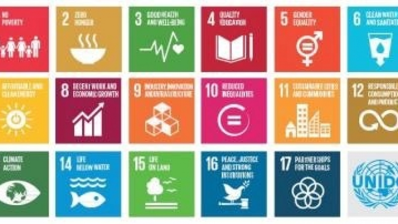 """Submission guidelines for """"Vietnamese Youth's potential contribution towards the United Nation's SDGs"""""""